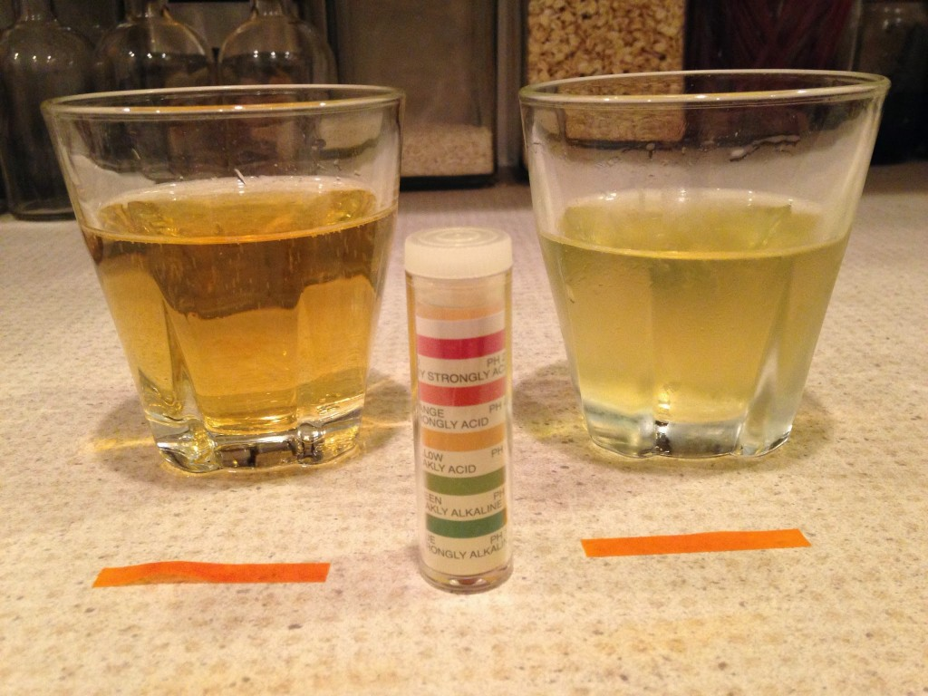 Samuel Smith's (left)  and home brewed Cider (right).