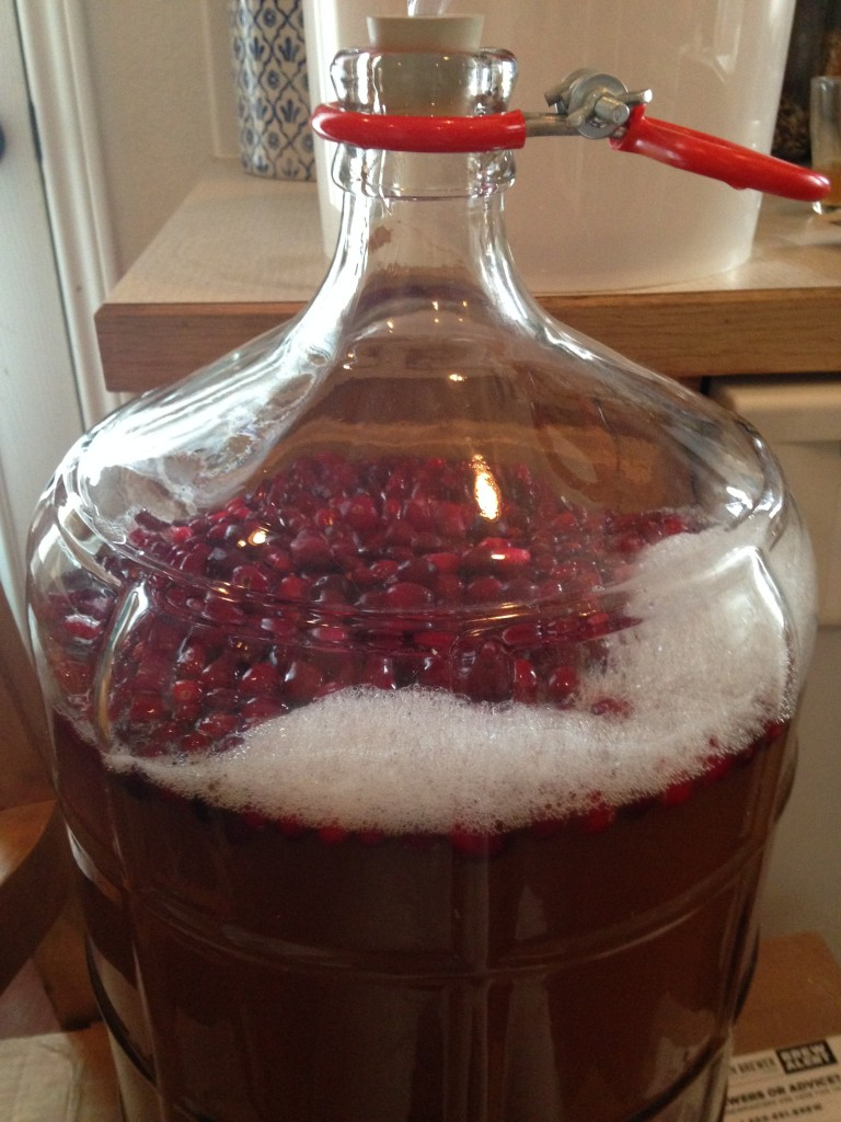NE_cider_frozen_cranberries