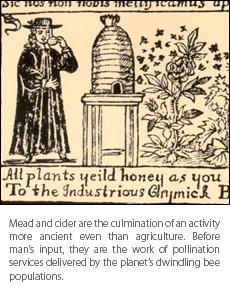 ancientbees