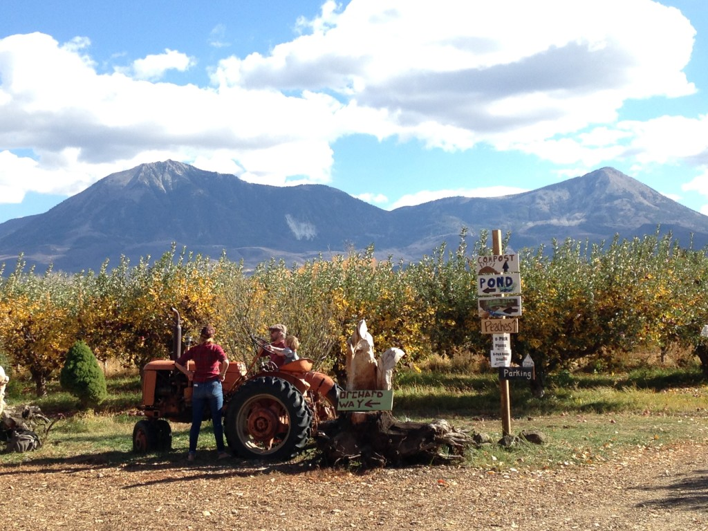 2016_bs_ciderfest_tractor_1